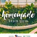 Homemade Green Sofia